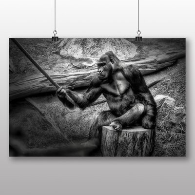 Big Box Art Gorilla Photographic Print