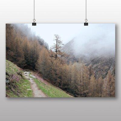 Big Box Art Hazy Tree Photographic Print