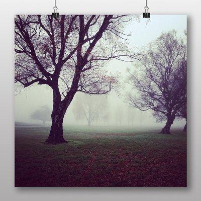 Big Box Art Hazy Trees Photographic Print Wrapped on Canvas
