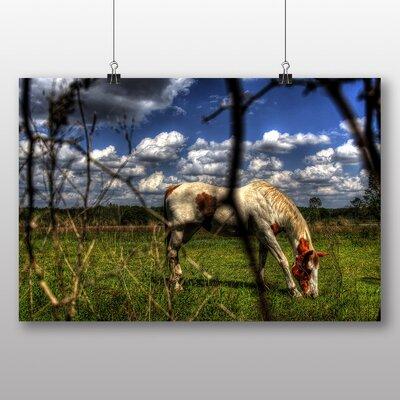 Big Box Art 'Horse Eating' Photographic Print