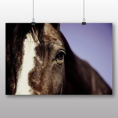 Big Box Art Horse No.2 Photographic Print Wrapped on Canvas