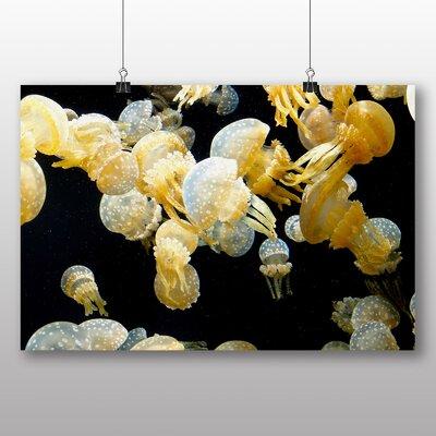 Big Box Art Jellyfish No.7 Photographic Print on Canvas
