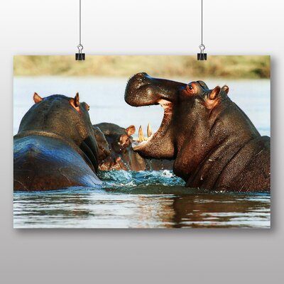Big Box Art Hippos Photographic Print