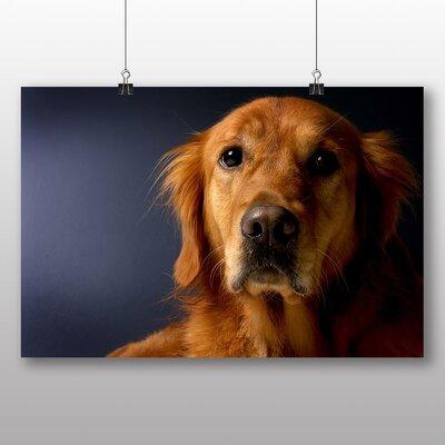 Big Box Art Golden Retriever Dog No.2 Photographic Print on Canvas