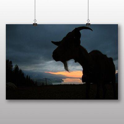 Big Box Art Goat No.4 Photographic Print on Canvas