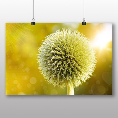 Big Box Art Globe Thistle No.2 Graphic Art Wrapped on Canvas