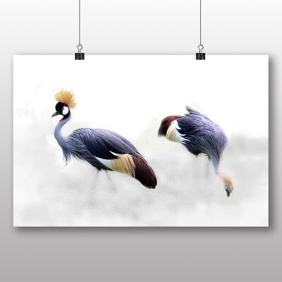Big Box Art Grey Crowned Cranes Bird Photographic Print