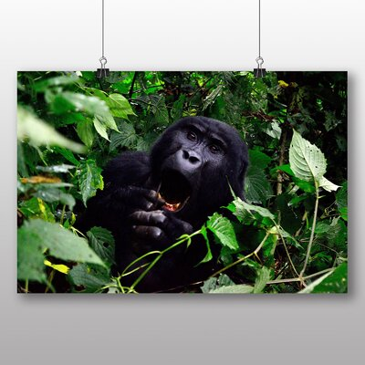 Big Box Art Gorilla No.2 Photographic Print