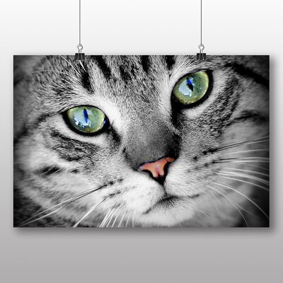 Big Box Art Green Eyed Cat Photographic Print Wrapped on Canvas