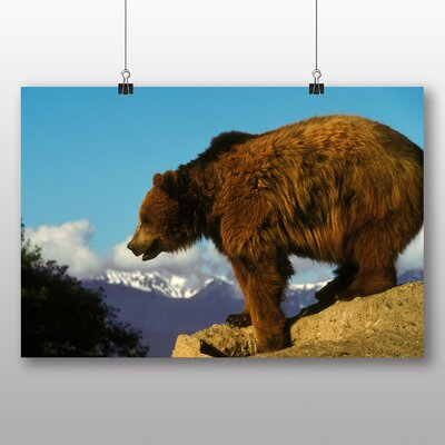 Big Box Art Grizzly Bear No.3 Photographic Print Wrapped on Canvas
