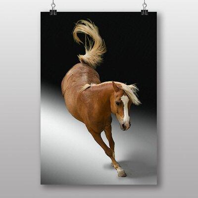 Big Box Art Horse No.3 Graphic Art