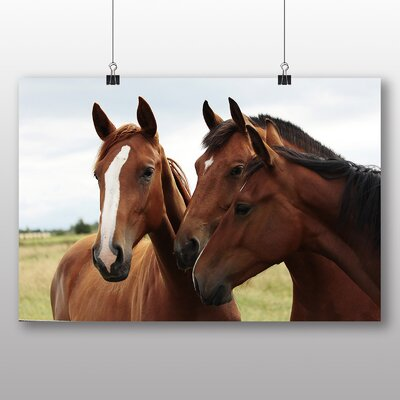 Big Box Art Horses No.2 Photographic Print Wrapped on Canvas