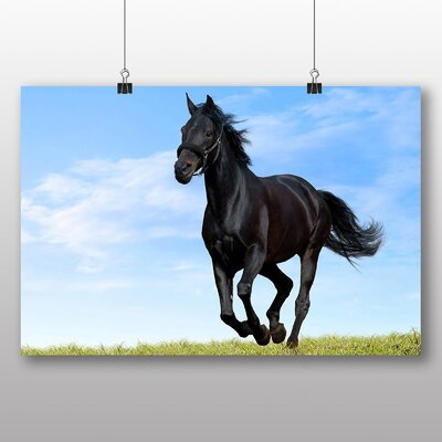 Big Box Art Horse Running Free No.1 Photographic Print on Canvas