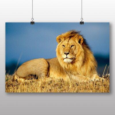 Big Box Art Lion No.1 Photographic Print