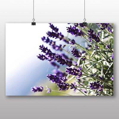 Big Box Art Lavender Flower No.2 Photographic Print on Canvas