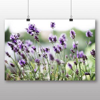 Big Box Art Lavender Flower No.1 Photographic Print on Canvas