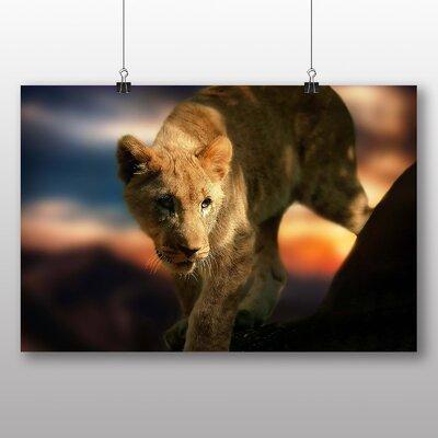 Big Box Art Lion Cub No.2 Photographic Print Wrapped on Canvas