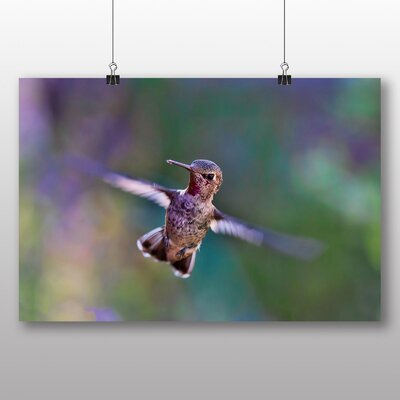 Big Box Art Hummingbird in Flight Photographic Print on Canvas
