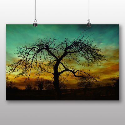 Big Box Art Lone Tree Sun Setting Sunset Photographic Print