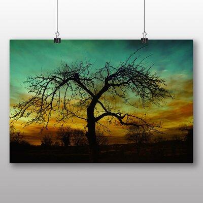 Big Box Art Lone Tree Sun Setting Sunset Photographic Print on Canvas