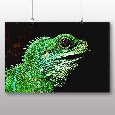 Big Box Art Iguana Lizard Photographic Print on Canvas