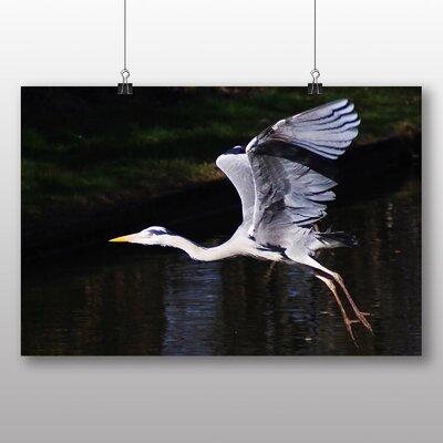 Big Box Art Heron Photographic Print