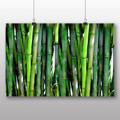 Big Box Art Green Bamboo Cane Photographic Print on Canvas