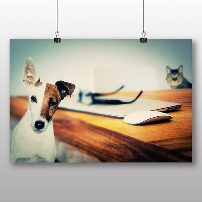 Big Box Art Jack Russel Dog and Cat Photographic Print Wrapped on Canvas