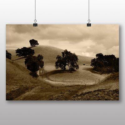 Big Box Art Lonley Cattle Photographic Print on Canvas