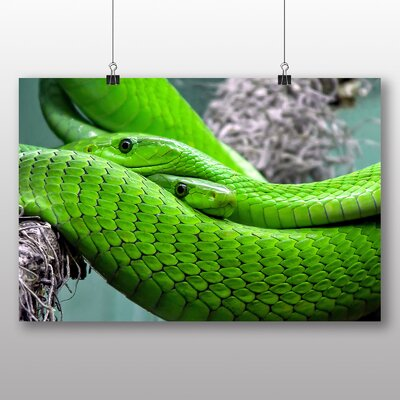 Big Box Art Green Mamba Snakes Photographic Print on Canvas