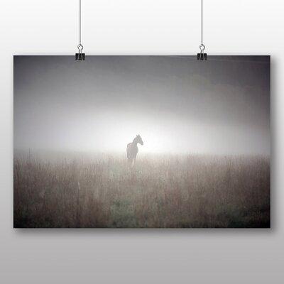 Big Box Art Horse Mist Sweden Landscape Photographic Print