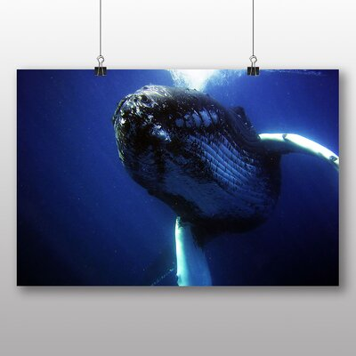 Big Box Art Humpback Whale Photographic Print Wrapped on Canvas