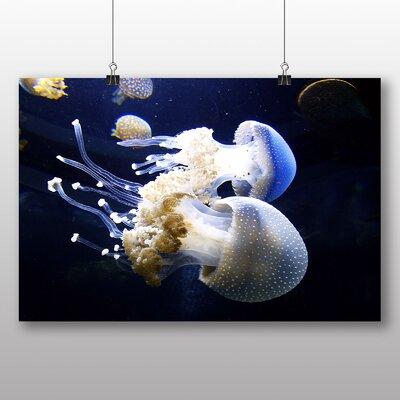 Big Box Art Jellyfish Photographic Print Wrapped on Canvas