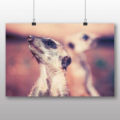 Big Box Art Meerkats Photographic Print