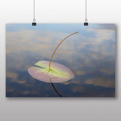 Big Box Art Lily Pad Pond Photographic Print on Canvas