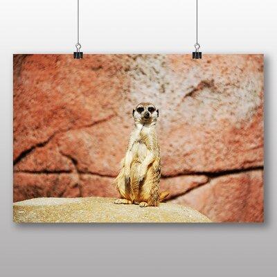 Big Box Art Meerkat No.2 Photographic Print Wrapped on Canvas