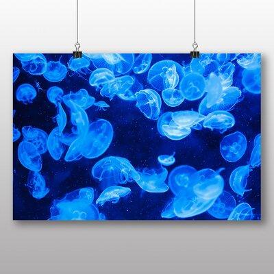 Big Box Art Jellyfish No.2 Graphic Art on Canvas