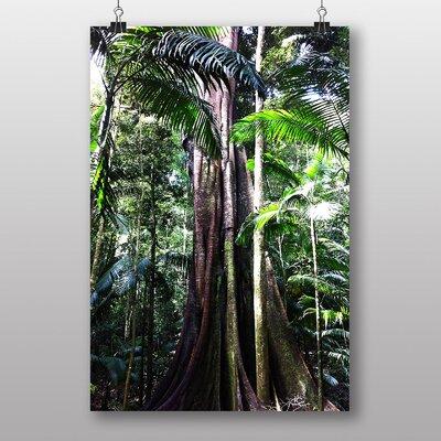 Big Box Art Jungle Rainforest No.3 Photographic Print