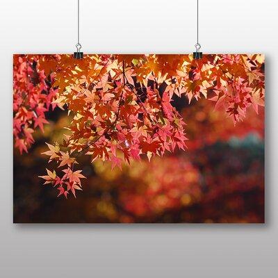 Big Box Art Maple Tree Leaf Photographic Print Wrapped on Canvas