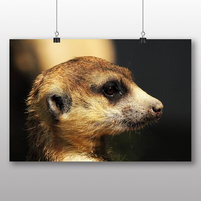 Big Box Art Meerkat Photographic Print Wrapped on Canvas