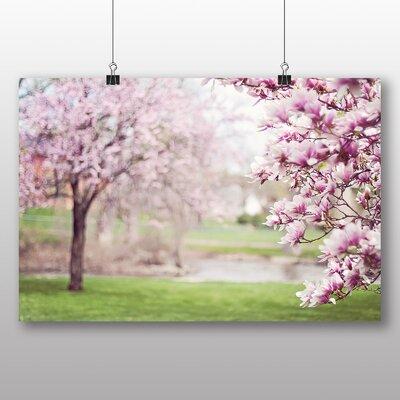 Big Box Art Magnolia Blossom Tree Photographic Print