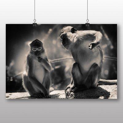 Big Box Art Mountain Monkeys Photographic Print Wrapped on Canvas