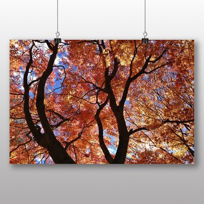Big Box Art Maple Tree Leaf Autumn No.2 Photographic Print Wrapped on Canvas