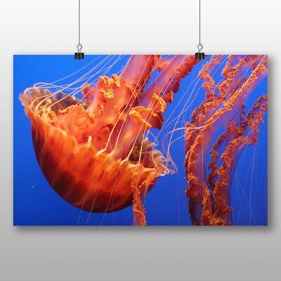Big Box Art Jellyfish No.5 Graphic Art Wrapped on Canvas