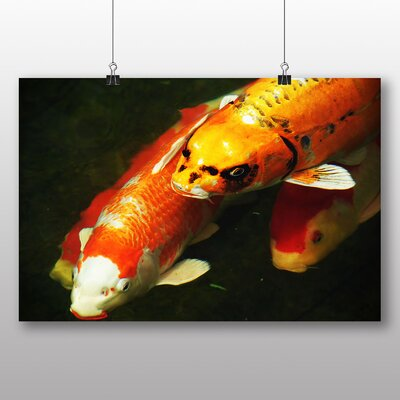 Big Box Art Koi Fish Photographic Print Wrapped on Canvas