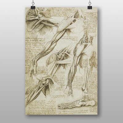 Big Box Art Anatomy No.2 by Leonardo Da Vinci Art Print