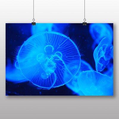 Big Box Art Jellyfish No.4 Graphic Art Wrapped on Canvas