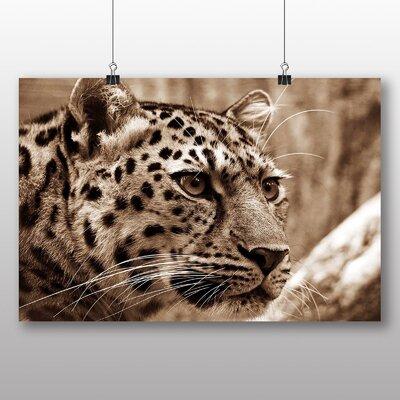 Big Box Art Leopard No.2 Photographic Print