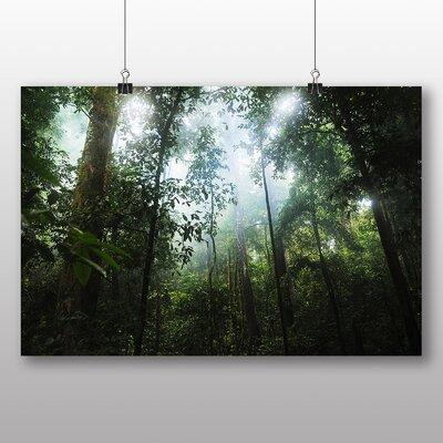 Big Box Art Jungle Rainforest No.2 Photographic Print Wrapped on Canvas