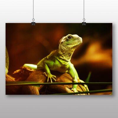 Big Box Art Lizard Photographic Print